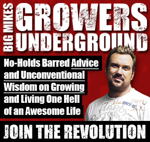 Growers Underground