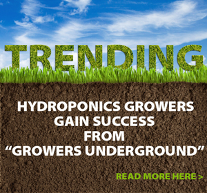 "Read How Hydroponics Growers Gain Success From ""Growers Underground"" Website"