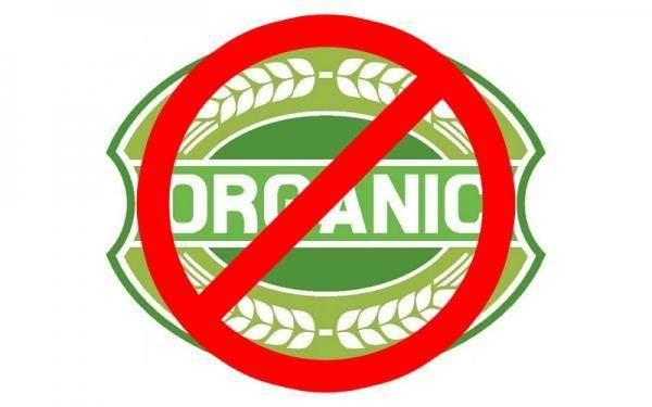Is the organic food you buy really organic?