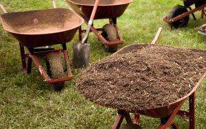 Coco coir looks like regular garden mulch, so it's easier to dispose of discretely.