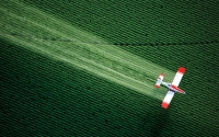 Pesticide problems are just one of the severe drawbacks associated with GMO food.