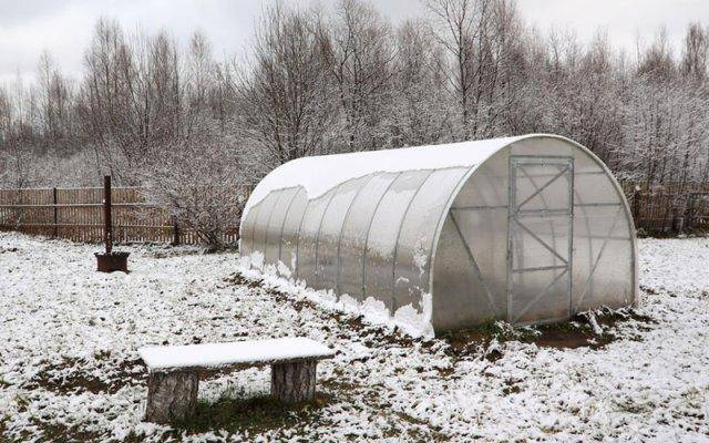 Winter hydroponics can be warm and sweet for you.
