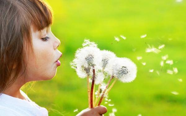 As a child, I loved dandelions, and I still do…but other people hate them.
