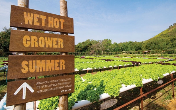 Advanced Nutrients' new outdoor nutrient program will take your outdoor crop to the next level.