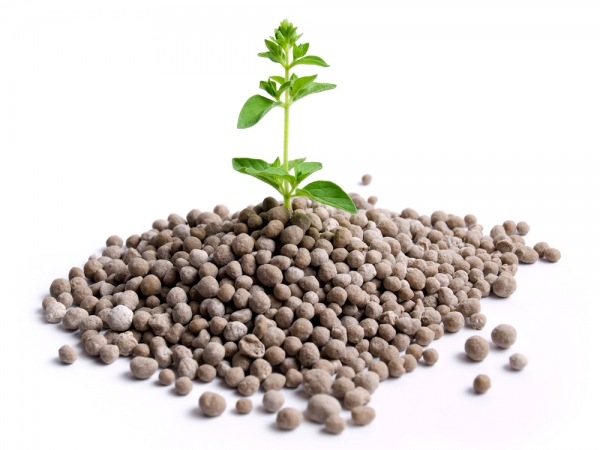 Nitrogen is essential to plant growth.