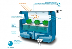 Sealeaf has developed a way to grow produce on the ocean.