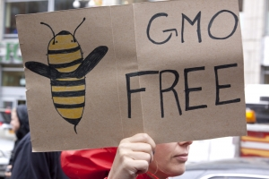 Monsanto Gives Up On Europe