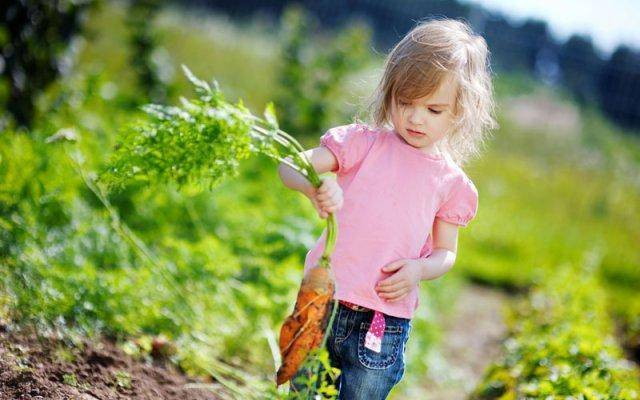 Teach your kids to garden instead of having them sit in front of a TV screen.