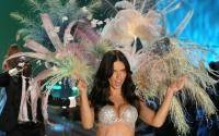 Adriana Lima struts her stuff on the catwalk. What talent!