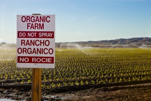 Organic farmers are getting a boost from the government. It's about time.
