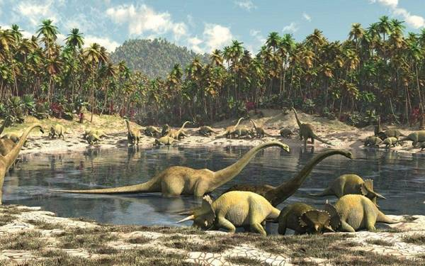 How were plants different in the time of the dinosaurs?