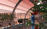 The future of gardening is using hydroponics to grow in inhospitable conditions.