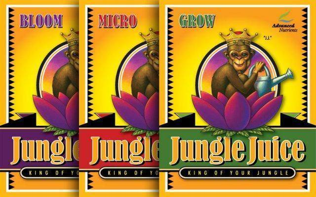 Jungle Juice is an inexpensive high-quality nutrient that is perfect for new growers.