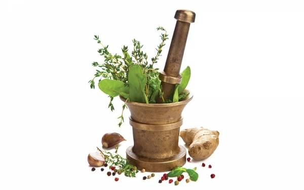 Grow your own medicinal herbs with our home grown tips.